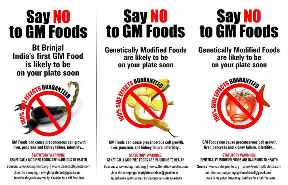 genetically modified foods 4 essay Genetically modified (or gm) foods are also known as frankenstein foods and needs to be removed from the market because of the possible negative effects on human health, the lack of food labelling, and the potential harm caused to the environment.
